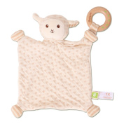 Ever Earth Lamb Blankie