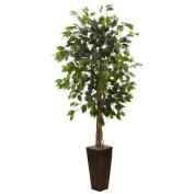 1.7m Ficus Tree w/Bamboo Planter