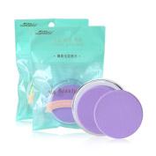 SY 2pcs Makeup Round Sponge Blender Women Facial Flawless Foundation Puff - Powder Blush BB Cream Applicator