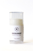All Natural Unisex Gel Stick Deodorant - With Aloe and Antibacterial Silver Citrate - Travel Size Vegan Deodorant