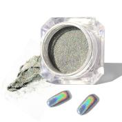 5g/box Holographic Laser Powder Nail Art Glitter Rainbow Pigment Manicure Chrome