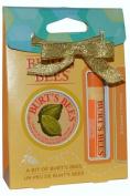 Burts Bees Set - Mango Lip Balm & Cuticl Crm