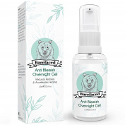 Bebarefaced Natural Anti Blemish Overnight Spot Treatment Gel - Sanitises