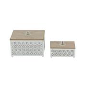 Awe-Inspiring Metal Wood Box ,Set Of 2