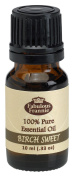 Birch Sweet Pure Essential Oil 10ml by Fabulous Frannie