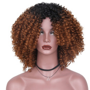 AisiBeauty Brown Kinky Curly Hair Wigs Heat Resistant Fibre Fluffy Wigs Short Ombre Synthetic Curly Wigs for Black Women African American Female