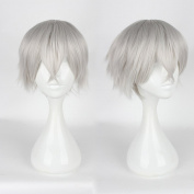 Mcoser 30CM Tokyo Ghoul Ken Kaneki Short Cosplay Silvery Grey Wig