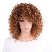 AISI HAIR Synthetic Curly Wigs Heat Resistant Fibre Curly Wigs for Black Women short brown wig