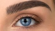 VitaBrow 247 Eyebrow Enhancing Growth Serum