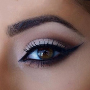 2 Pc Cat Eye Smokey Eye Stencils & 3 Pc Styles Fashionable Eye brow Stencils Set