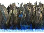 Rooster Tails,1 Yard - 25cm - 30cm Turquoise Blue Dyed Over Natural Coque Tails Long Feather Trim
