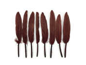 Duck Feathers, 0.1kg - Brown Duck Cochettes Loose Wholesale Feathers