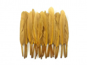 Duck Feathers, 1 Pack - Old Gold Duck Cochettes Loose Feather 10ml