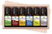 Plant Therapy USDA Certified Organic Synergy 6 Essential Oil Set. 10 ml (1/3 oz) bottles of each